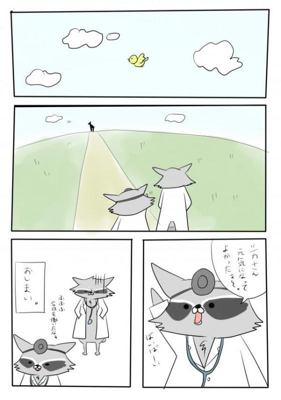 アライグマ5