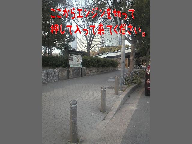 60228014_178.jpg