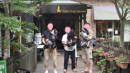dogガーデン入口