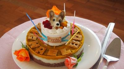 ボーンちゃんケーキ