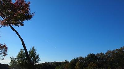 抜けるような青い空