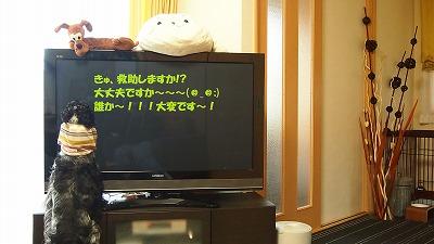 P3250092.jpg