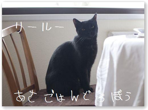 DSC_0226 (コピー)