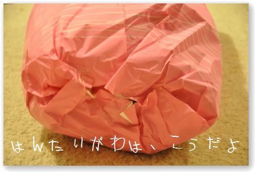 DSC_0062_20101224040026.jpg