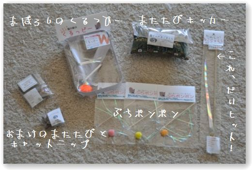 DSC_0514_20110204032637.jpg