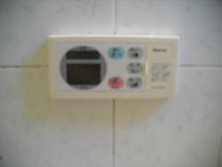CIMG4300.jpg