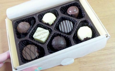 オークラWDチョコレート (3)