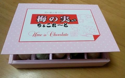 梅チョコ (2)