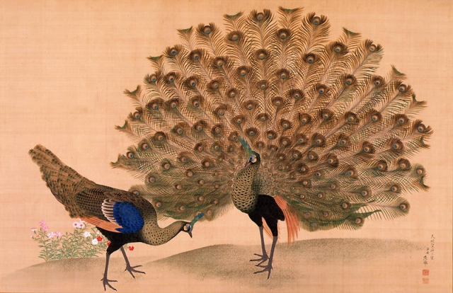 Okyo_Peacock_and_Peahen.jpg