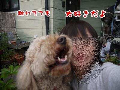 2012-5-17ちぃ坊スタンプ旅立ち036