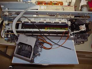 P10052310-s.jpg
