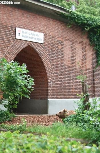 Mauml;rkisches Museum (1)