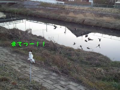 20140131005917546.jpg