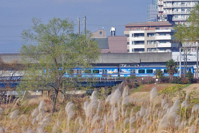 IMGPyaku3051.jpg