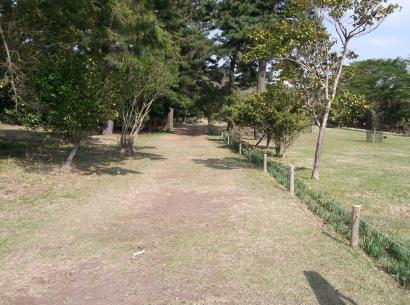 DSCF3149_convert_20120520103639.jpg
