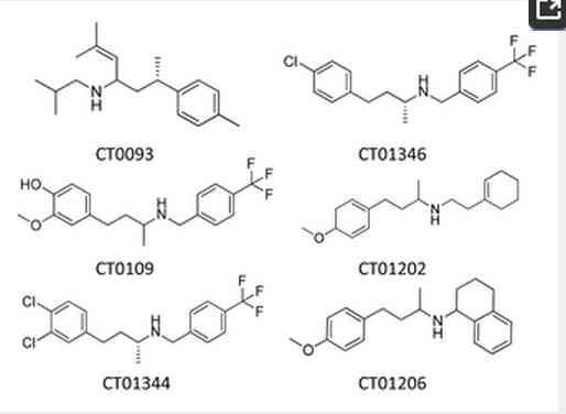 介護時々放射能 sigma-2/PGRMC1受容体はアミロイドオリゴマーのターゲット