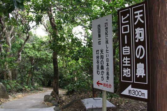 20100504_ashizuri_cape-14.jpg