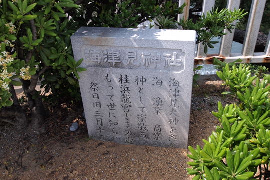 20100505_katsurahama-16.jpg