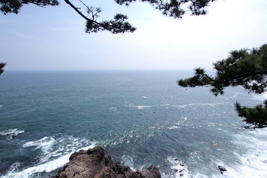 20100505_katsurahama-19.jpg