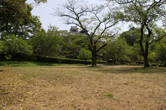 20100505_kochi_castle-100.jpg