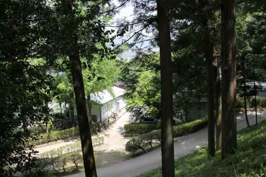 20100505_kochi_castle-102.jpg