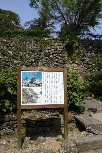 20100505_kochi_castle-14.jpg