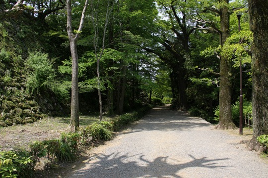20100505_kochi_castle-94.jpg