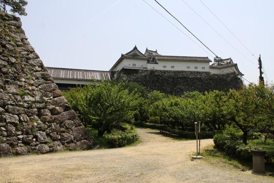 20100505_kochi_castle-98.jpg