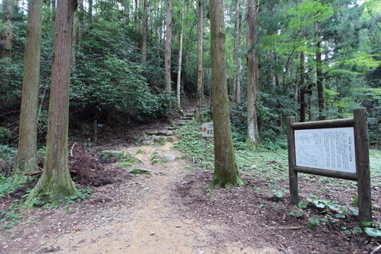 20100813_tsuwano_castle-26.jpg