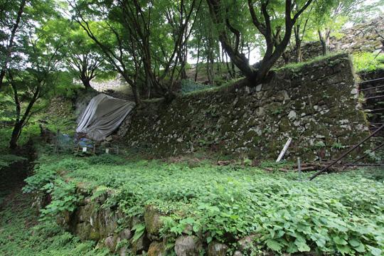 20100813_tsuwano_castle-29.jpg