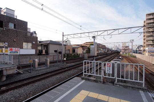 20100919_kikuna-02.jpg
