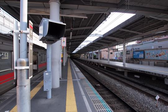 20100919_kikuna-03.jpg