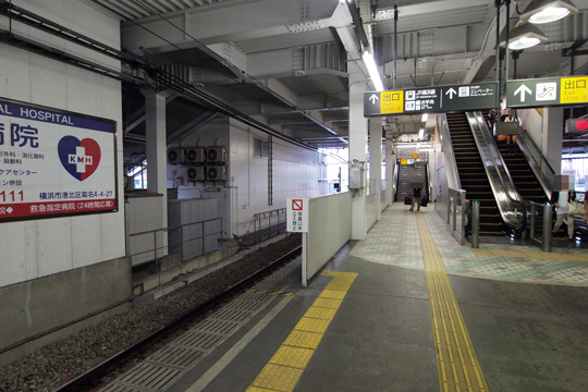 20100919_kikuna-04.jpg
