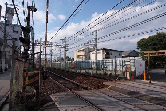 20101002_naruo-03.jpg