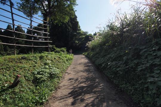 20101011_kasugayama_castle-118.jpg