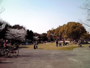 大泉緑地 2012 わんぱくランド(反対側から)
