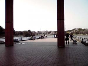 大泉緑地 2012 中央休憩所