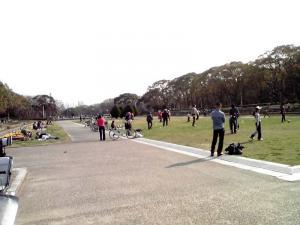 大泉緑地 2012 中央花壇