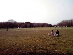 大泉緑地 2012 大芝生広場