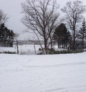 真冬到来・・・