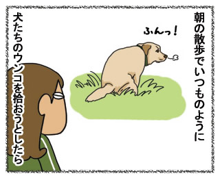 羊の国のラブラドール2