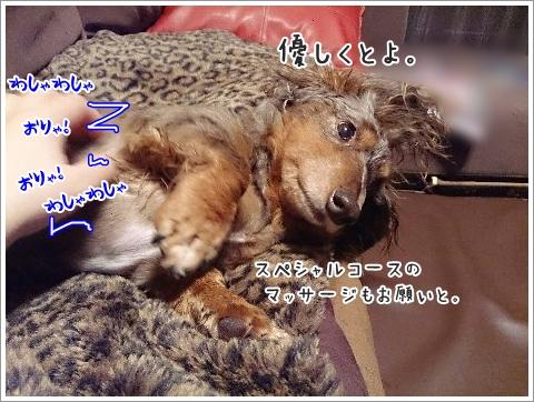 fc2_2014-12-11_04.jpg
