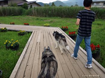 歩く、歩く