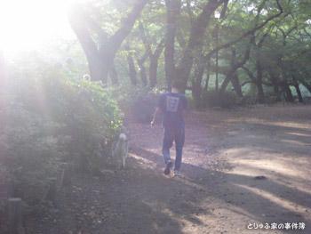 早朝の井の頭公園