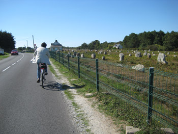 風を切ってサイクリング