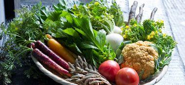 Veggie Monday!