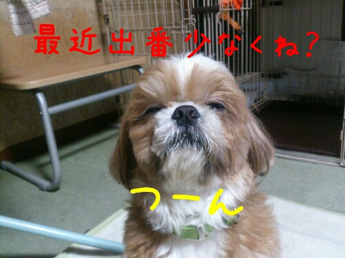 fc2_2014-01-07_00-03-27-011.jpg
