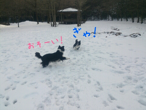 fc2_2014-01-15_00-40-29-350.jpg