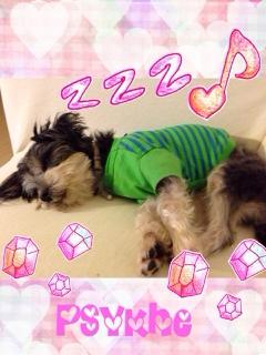 fc2blog_20131217182018b5e.jpg