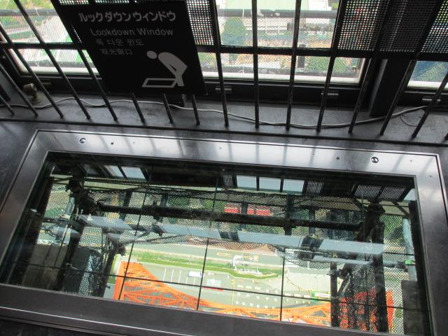 東京タワー-45